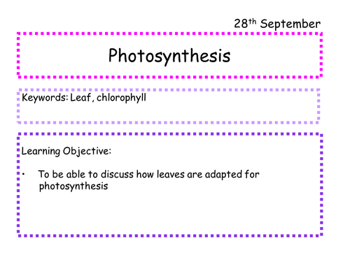 AQA GCSE Photosynthesis SOW
