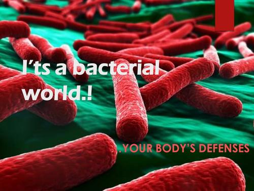 Immunity PowerPoint