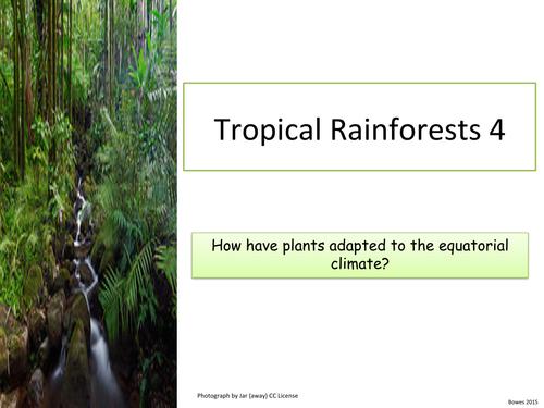 Tropical Rainforests: 4 Plant Adaptations. KS3 and KS4
