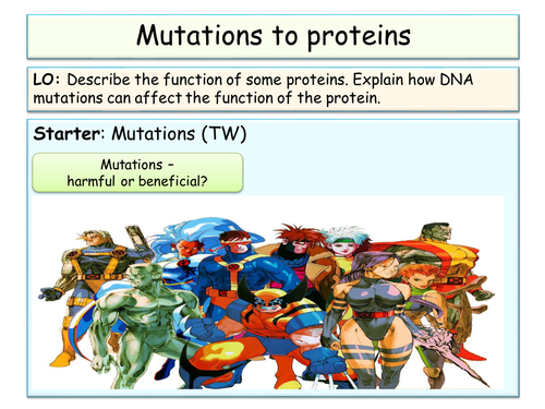 B3 - OCR - DNA and proteins