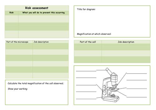 NEW KS3 year 7 sceince investigation skills level assessed tasks