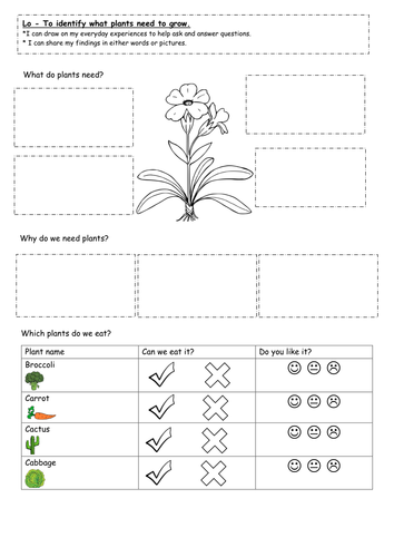 year 1 plants and growing unit science by keiramccosh teaching resources tes. Black Bedroom Furniture Sets. Home Design Ideas