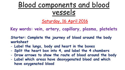 biology blood components and blabla A study guide about the components and functions of blood erythrocyte biology study guide topics components of blood 1.