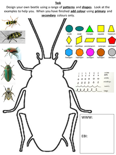 Insect Bug Cover Worksheet By Tajkaur Teaching Resources
