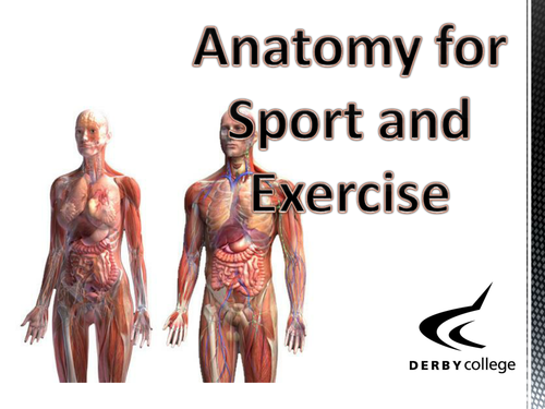 Anatomy in Sport