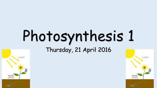 B2 Photosynthesis