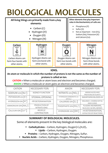 Biology AS Level OCR Revision Notes - Biological Molecules