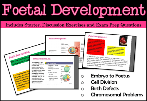Foetal Development - Embryo to Foetus (Unit of Work)