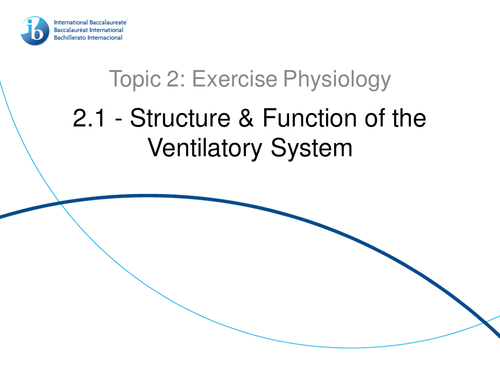 2.1. Structure and Function of the Ventilatory System IB SEHS PowerPoint
