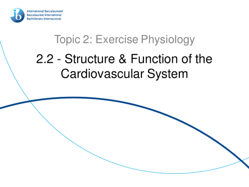 2.2 Structure and Function of the Cardiovascular System IB SEHS PowerPoint