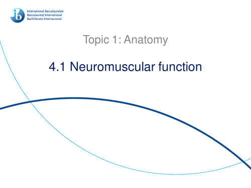 4.1 Neuromuscular Function IB Sports, Exercise and Health (SEHS) PowerPoint