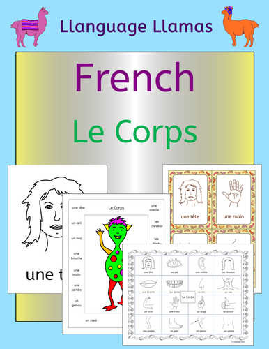 French Parts of the Body - Le Corps