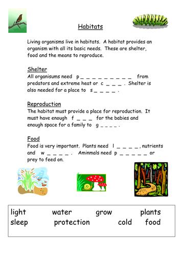 Habitats starter ks3 by Musarat_kabir - Teaching Resources - TES