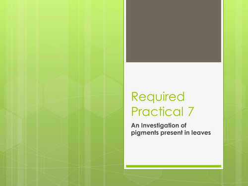 Required Practical 7 - chromatography of leaf pigments