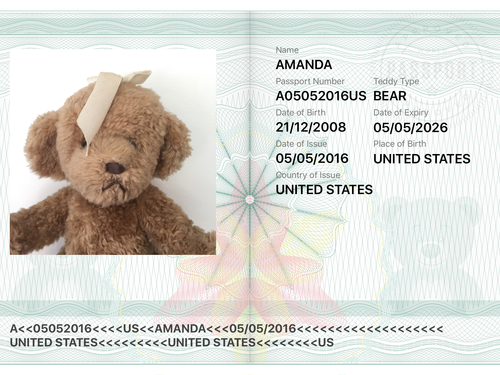 Teddy Bear Passport - iPhone & IPad App by janerikpaul ...