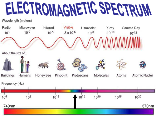Electromagnetic Spectrum Worksheet / Marketplace activity ...