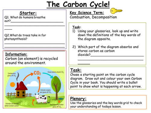 SEN Key Stage 3: Carbon Cycle