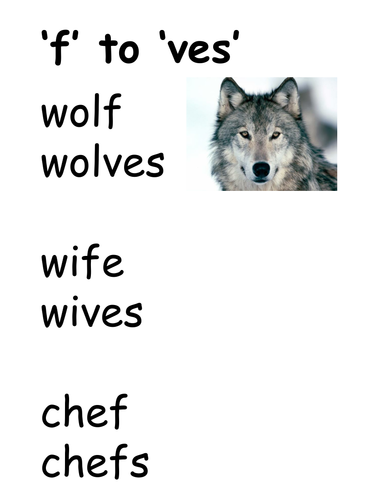 Plurals from nouns ending in f and fe