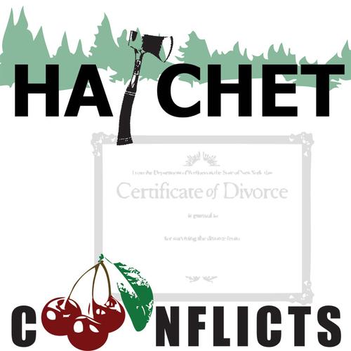 HATCHET Conflict Graphic Organizer - 6 Types of Conflict