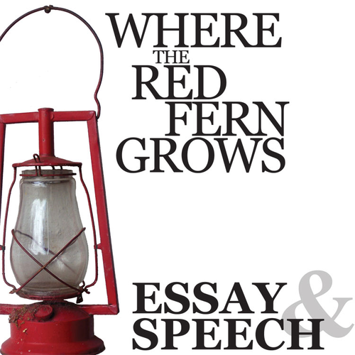 where the red fern grows essay question View essay - where the red fern tree grows book from eng 1 at west orange-stark h s summary the beginning of the book starts with the man, billy leaving his office as he was leaving, billy.