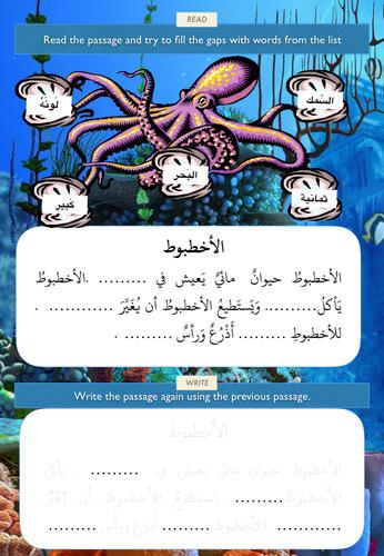 Animals - The Octopus