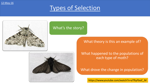 New AQA AS Biology - Types of Selection