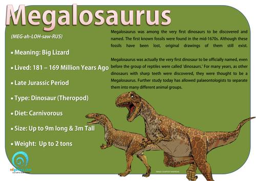 Dinosaurs Poster Set