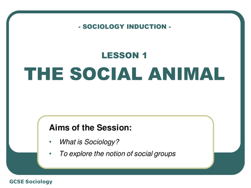 social processes in sociology pdf