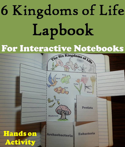 six kingdoms of life lapbook by sciencespot teaching resources. Black Bedroom Furniture Sets. Home Design Ideas