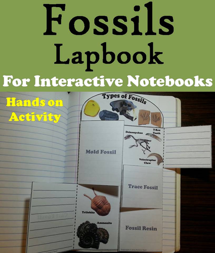 Science Spot Teaching Resources Tes