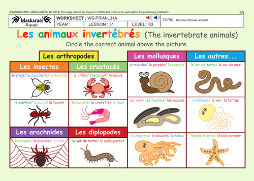 french unit 6 friends activities year 5 6 the vertebrate and invertebrate animals by. Black Bedroom Furniture Sets. Home Design Ideas