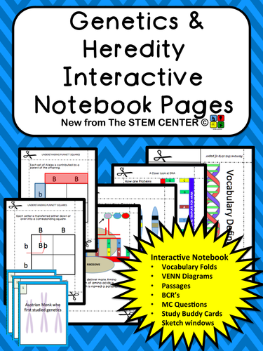 Heredity And Genetics Interactive Science Notebook By Stemcenter