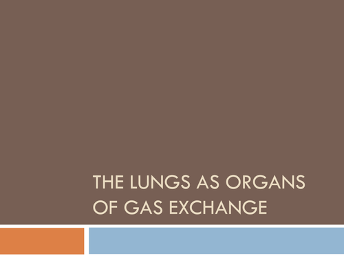 The Lungs as Organs of Gas Exchange
