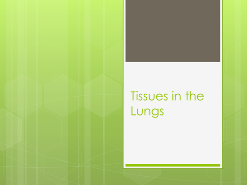 Tissues in the Lungs