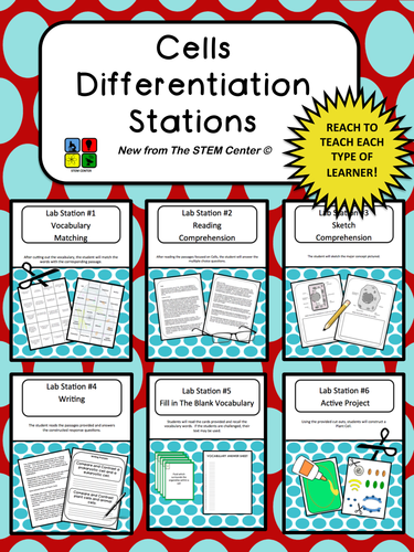 Cells: Differentiation Stations