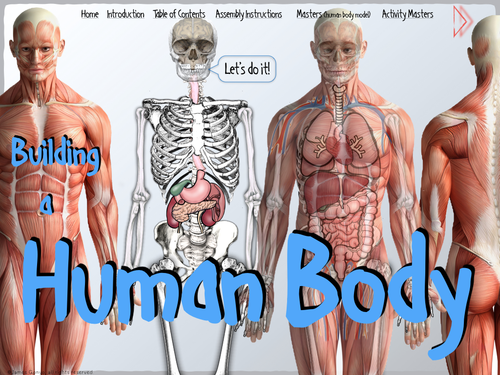 Building a Human Body BUNDLE