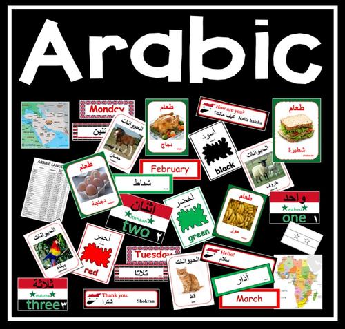 Qatar News Agency  Global Educators Mull Arabic Language Teaching     Pinterest