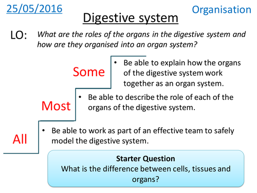Miss radfords science emporium teaching resources tes human digestive system new gcse ccuart Image collections