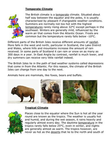KS3 Climate Zones / Biomes