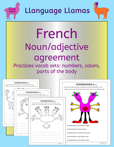 French numbers, colors and parts of the body - noun adjective agreement