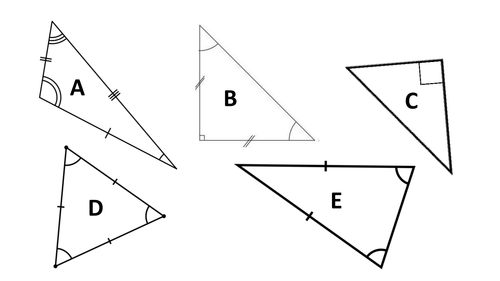 Triangle Type Properties Classification Magenta Principles