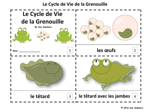 how to say frog in french