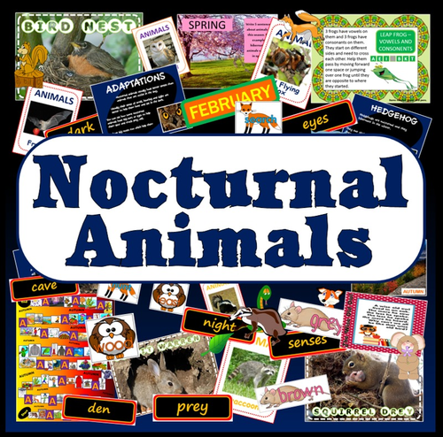 habitats animals science resources display early years ks1 2 weather by uk teaching resources. Black Bedroom Furniture Sets. Home Design Ideas