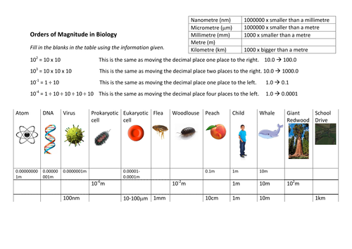 Orders of magnitude worksheet - AQA Biology (9-1) new GCSE