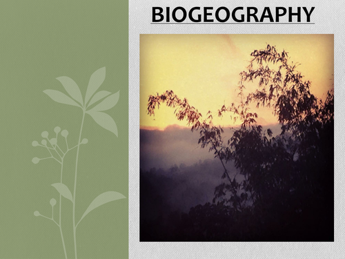 Biogeography / Ecosystems. Fully differentiated KS3 lesson- introduction to ecosystems