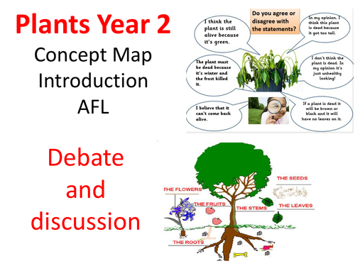 Plants Concept map and Assessment Task