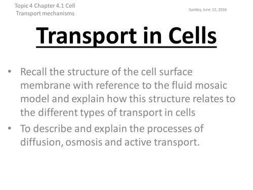 Edexcel Biology B - Topic 4 - Lesson 2 - Cell Transport MEchanisms
