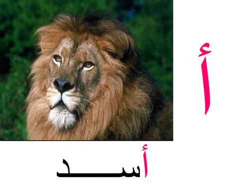 Learn Arabic alphabet in easy way