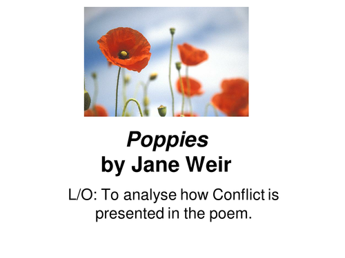 Comparison of 'Futility' and 'Poppies'