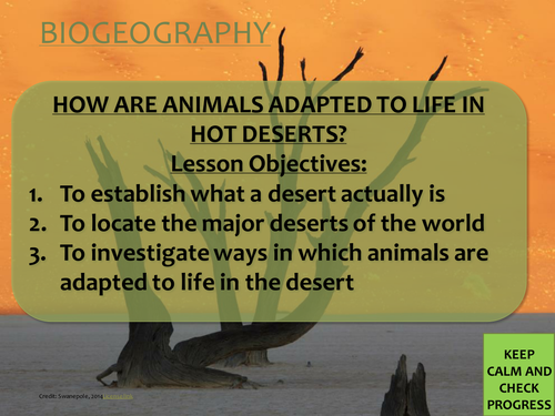Biogeography/ Ecosystems KS3 lesson- how are animals adapted to life in hot deserts?